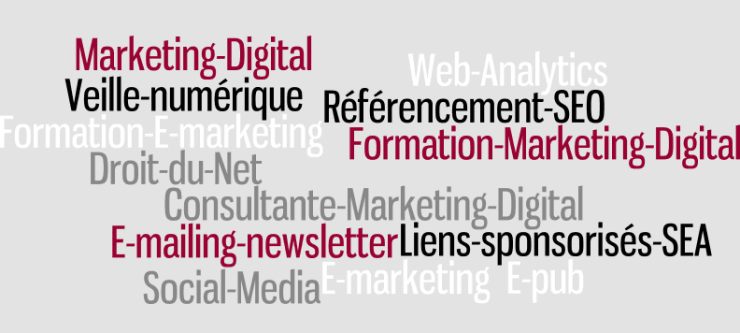 Consultante Marketing Digital, Formatrice  E-marketing, Experte Numérique